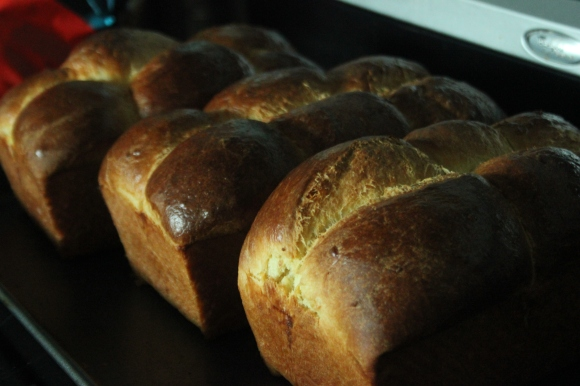 Brioche Bread